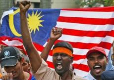 Hindus, Malaysia, cow, vaccination