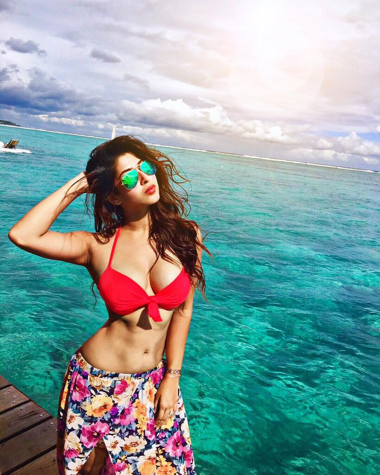 Sonarika Bhadoria, Prithvi Vallabh, TV shows, movies, bikini, Devon ke Dev Mahadev