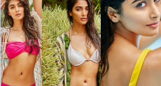 Pooja Hegde, bikini, photos, pics, photoshoot, latest pictures, movies, Mohenjo Daro, Bollywood