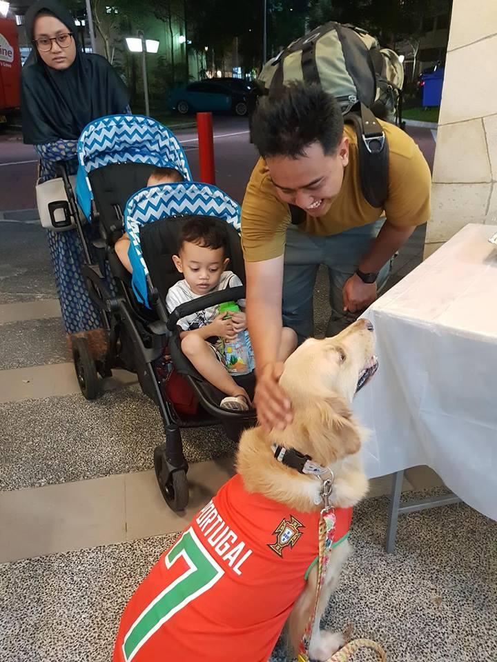 Malay Muslim, Dog, Singapore, Islam, dogs, Muslims