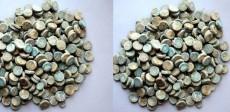 Archaeological Survey of India, ASI, Copper Coins, India, Khirki Mosque,Khan-i-Jahan Junan Shah, Prime Minister ,Shershah Suri , Firoz Shah Tughluq , Tughlaq, Muslim, Islam, Mosque