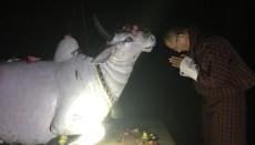 Bhutan,Tshering Tobgay, Hindu Temple, Hinduism, India, Nepal, People's Democratic Party,Zhabdrung Ngawang Namgyel, Bhairabkunda Shiv Mandir Jumotshangka, Thimphu, Devi Panchayan Mandir, Drukpa Kagyu, Nyingmapa Buddhism, Mahayana Buddhism , Nepali, Hindu Population Bhutan, Christians, Christianity