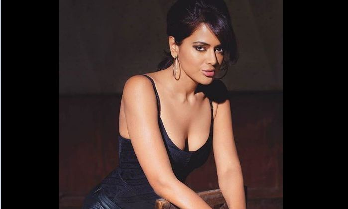 Akshai Varde, Sameera Reddy , pregnancy, body positivity , Kareena Kapoor Khan
